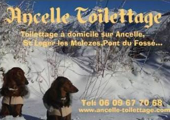 ancelle toilettage - Bienvenue chez Loc'Ancelle Services !