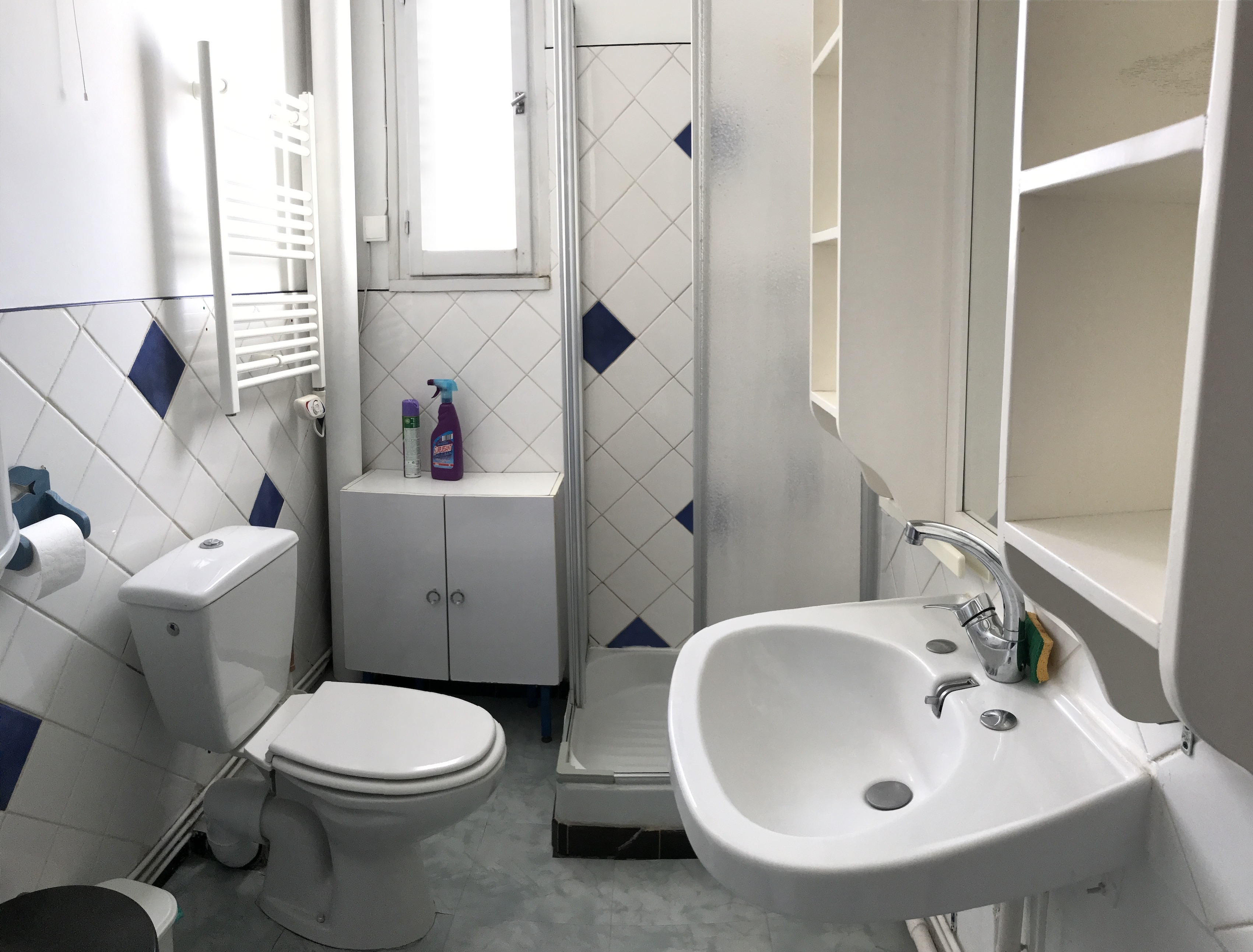 ferraud sdb - ANCELLE GRAND T2 DE 50 m2 (6 couchages)